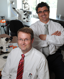 Kevin Niswender, M.D., Ph.D., and Aurelio Galli, Ph.D.