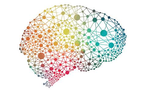 Colorful stock photo of human brain