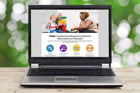 TRIAD website on computer screen