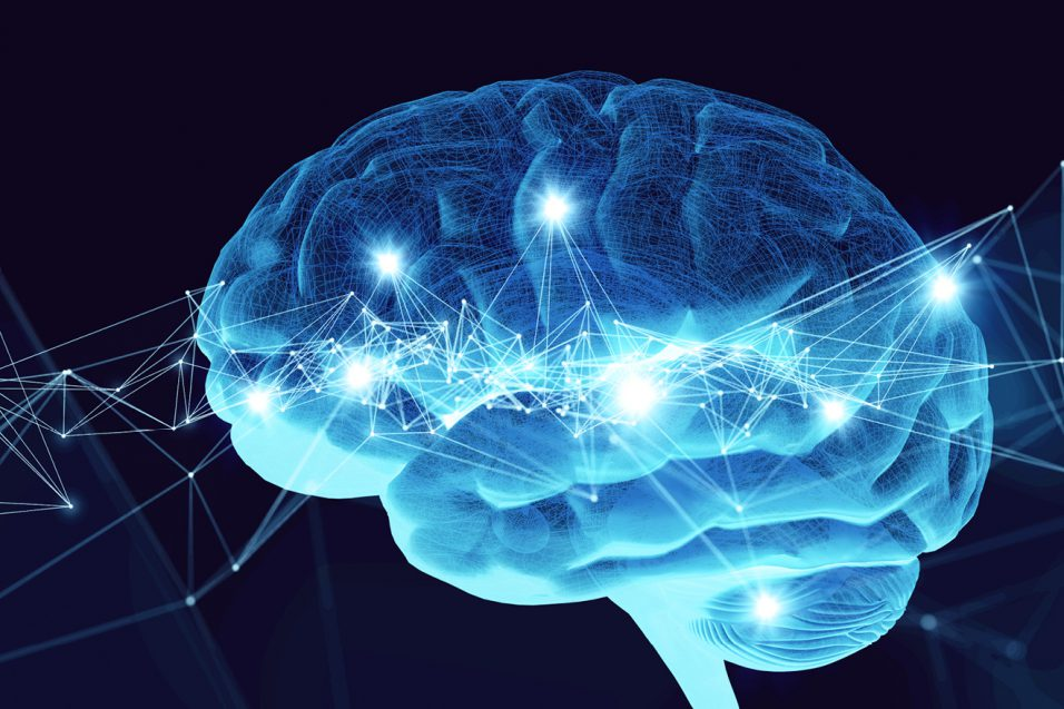 Human brain on abstract blue background