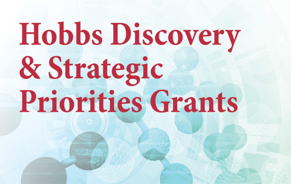 Hobbs Discovery & Director's Strategic Priorities Grants