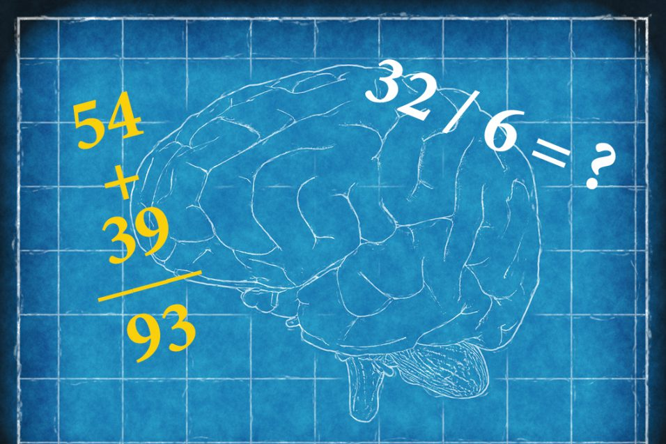 Illustration of human brain with math problems on top